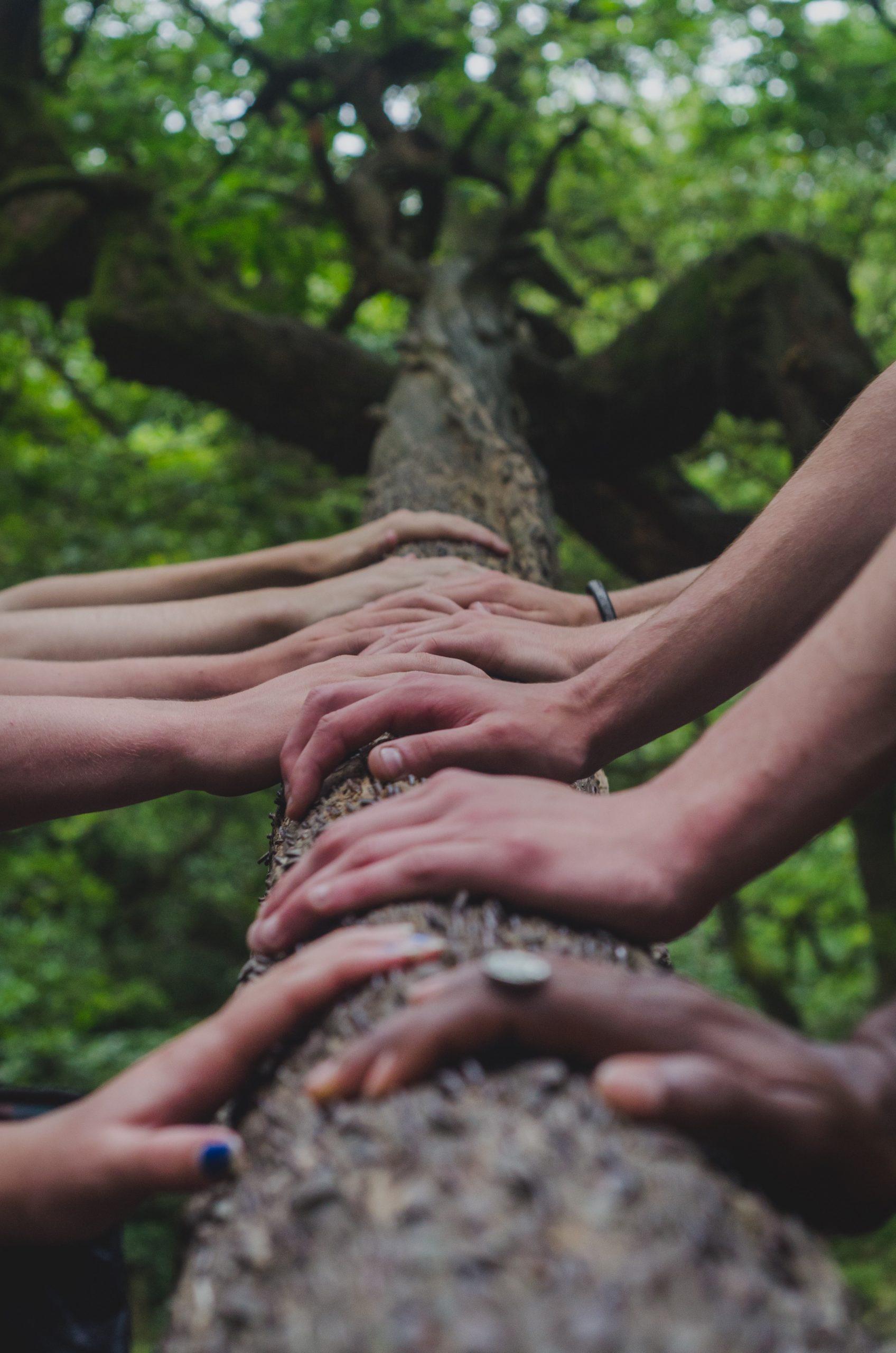 puterea grupului